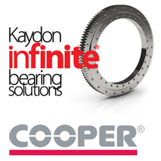 Cooper Bearing2